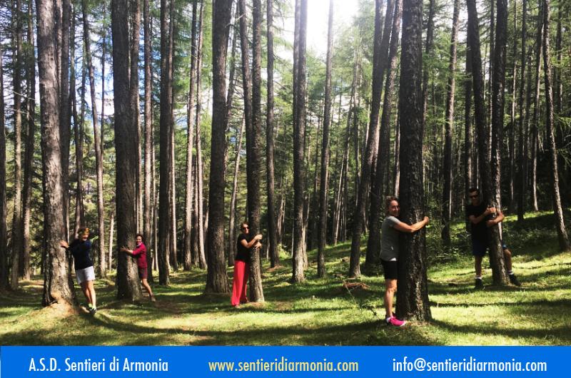 Fai il pieno di Energia prima dell'autunnoRigenerati con una Vacanza Yoga in montagnaDAL21 AL27AGOSTO 2021